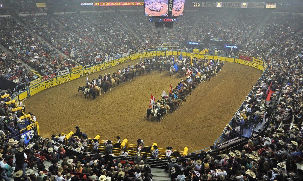 Финал чемпионата США по родео в Лас-Вегасе 697360b77a166321068a95698799607d.jpg