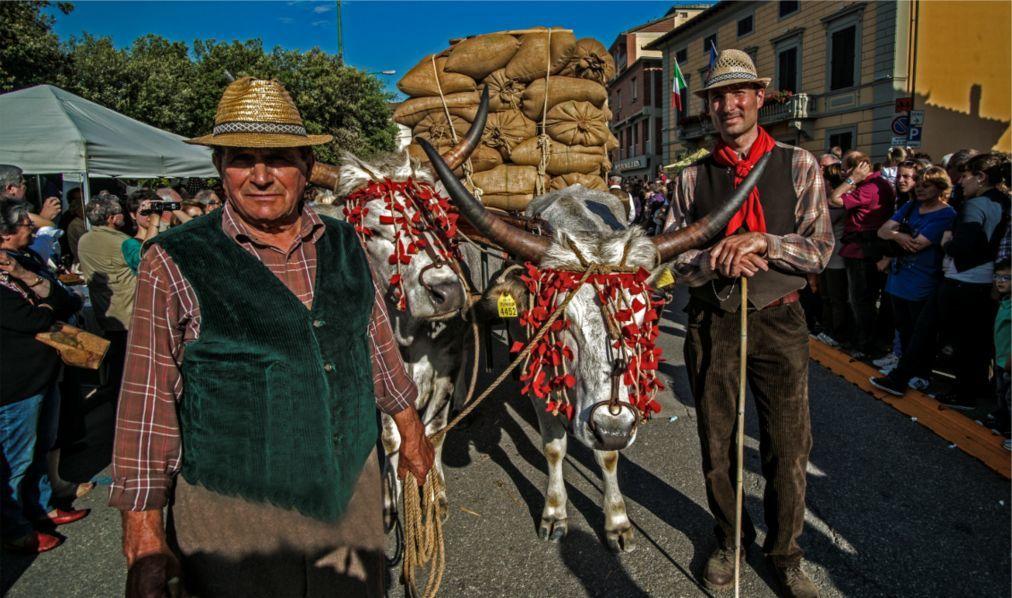 Фестиваль вина Кьянти в Монтеспертоли 751b9f4a06c16f60d879ec25618ca188.jpg