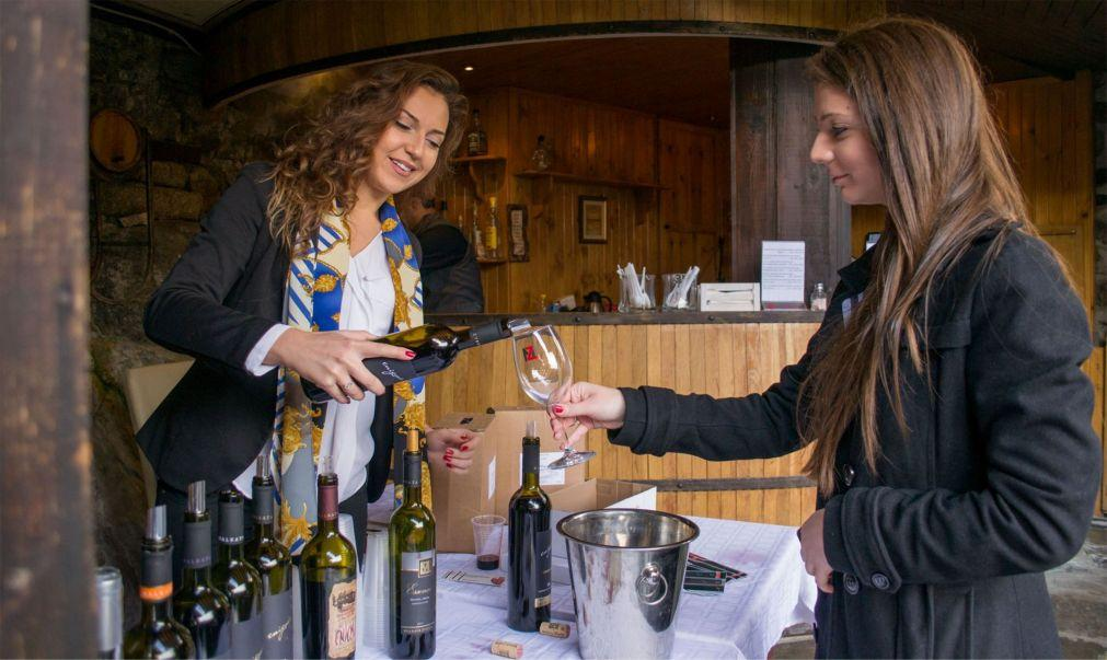 Праздник молодого вина в Пловдиве 787178e714ef78b9da5fa12334fe80b9.jpg