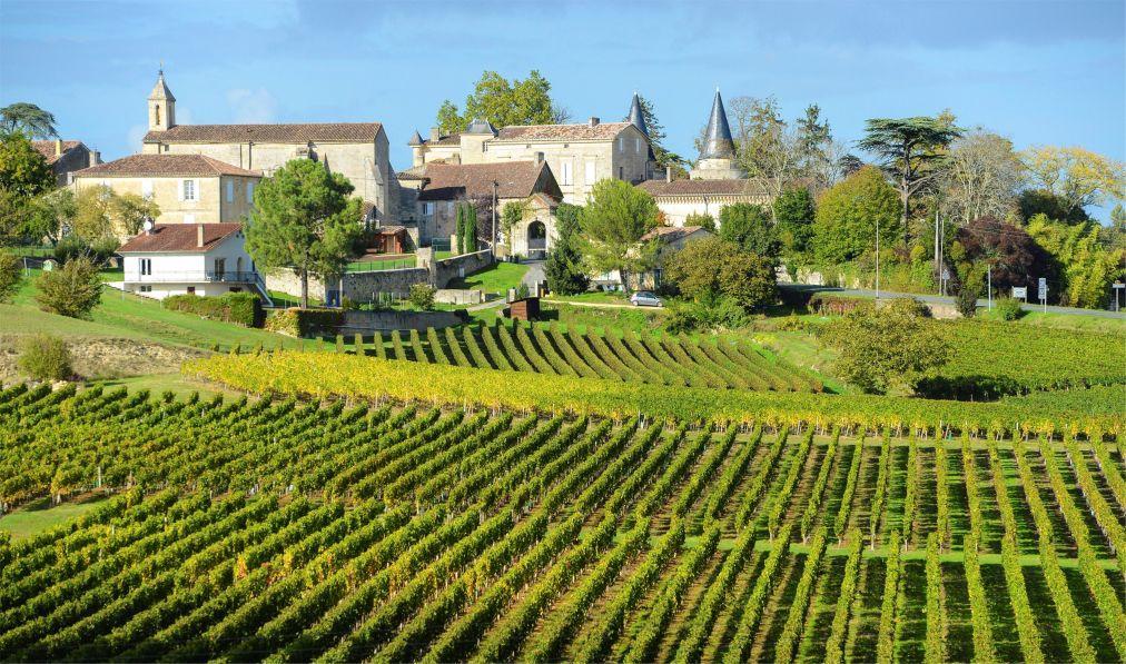 Фестиваль вина в Бордо 7fcb7ece82d954edcd5319041b16d24f.jpg