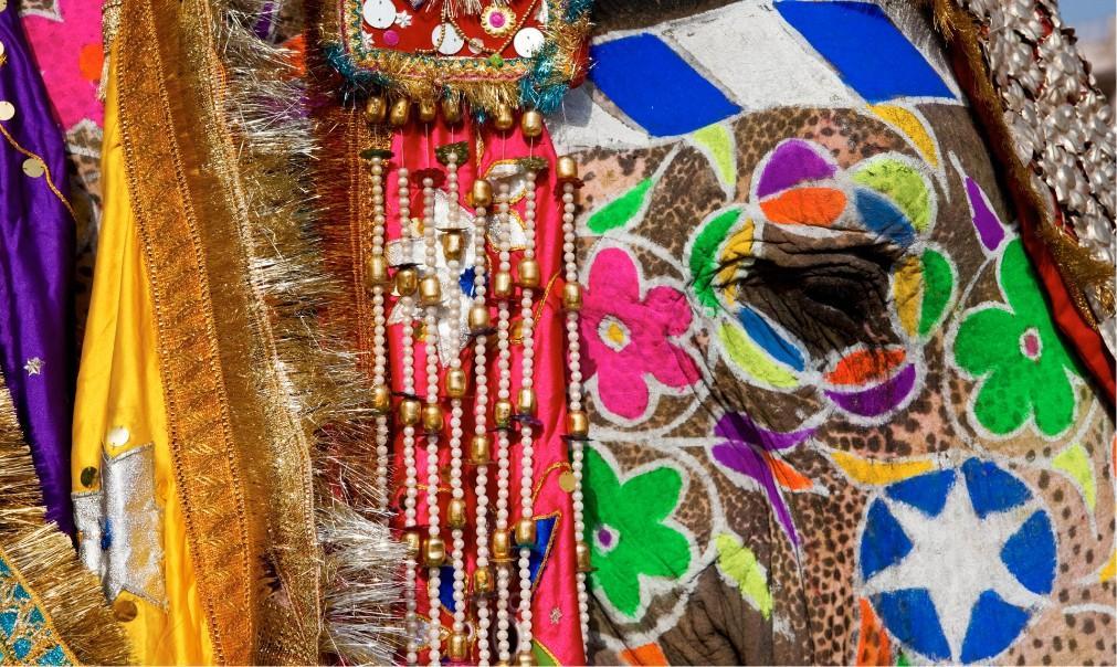 Фестиваль слонов в Джайпуре 807e6f6cd6ba452c4d7b6d3231a36940.jpg