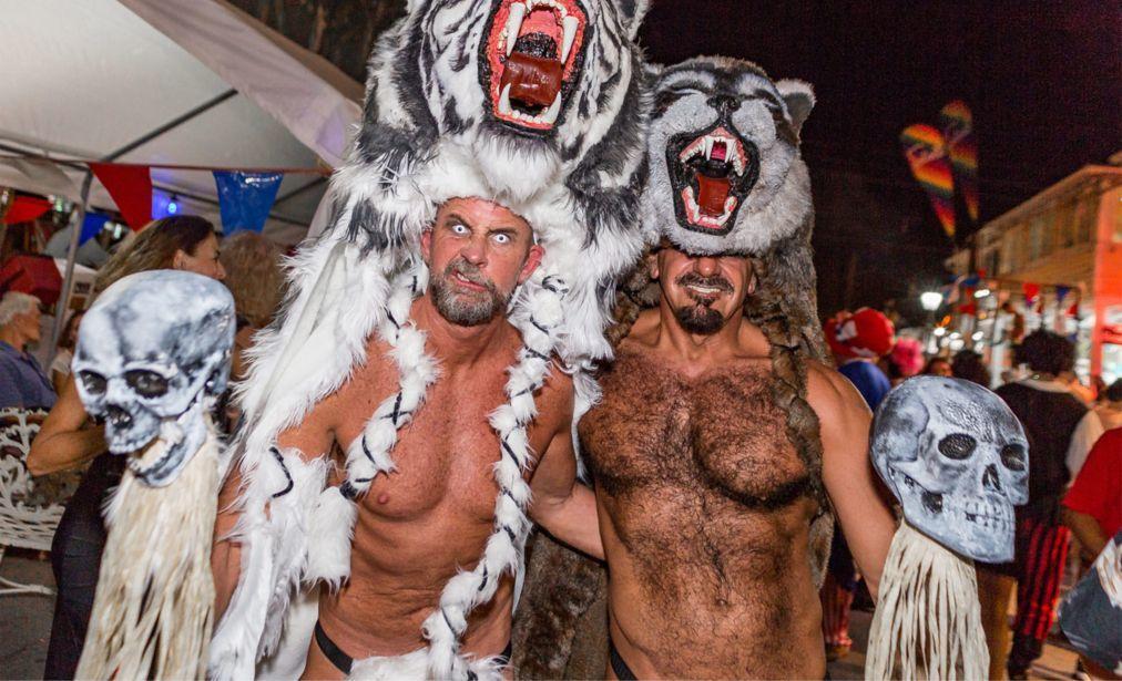 Фестиваль «Фэнтези Фест» в Ки-Уэст 85bf20245f9d2d3816d23e7b818d5482.jpg