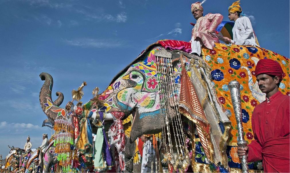 Фестиваль слонов в Джайпуре 873cfe3ef59710a76f43bf5025c10e49.jpg