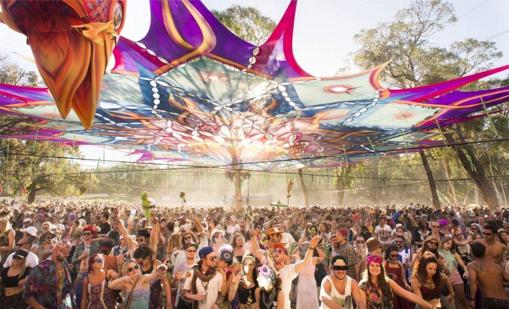 Фестиваль электронной музыки «Rainbow Serpent» в Лекстоне 91bd0831ce88243c67d119579bdf7586.jpg