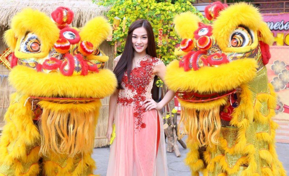Вьетнамский Новый год Тет в Ханое 927ed91692222b8cef1f354e125439bf.jpg