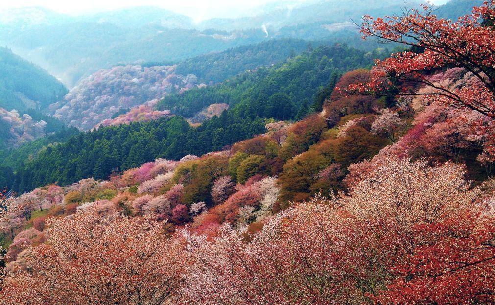 День гор в Японии 96a1bba0c3c151a62f06e12b61916115.jpg