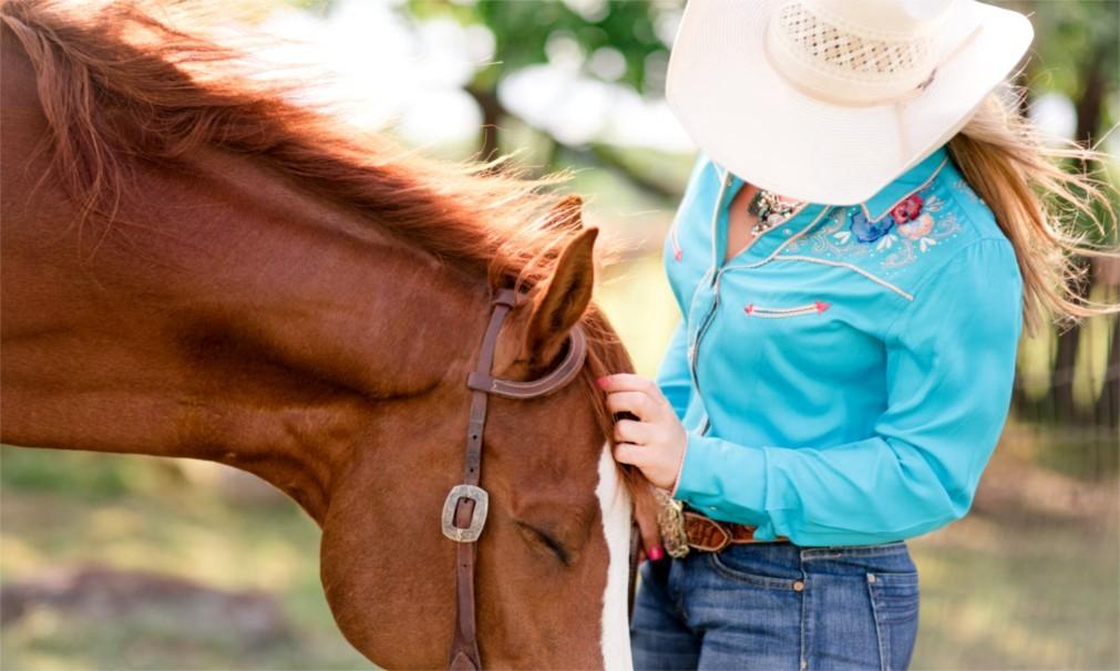 Национальная выставка домашнего скота и родео в Денвере 97dc919819697491a17ee0aa3aa4aa05.jpg