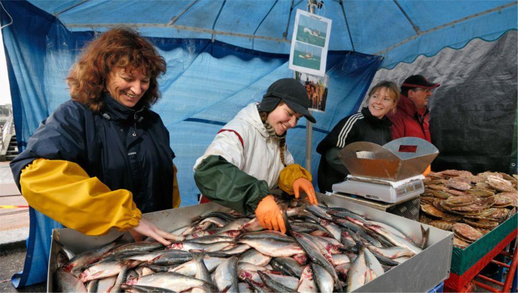 Фестиваль морских гребешков в Вилер-Сюр-Мер 9894a9d1e3a51af0eba1c2c5e846c644.jpg