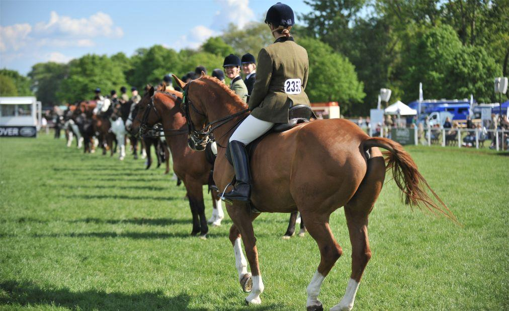 Королевское конное шоу в Винздоре a562dfabfd9a534027f33ccf76a07b02.jpg