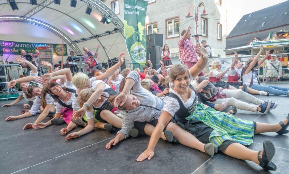 Фестиваль вина в Рюдесхайм-на-Рейне a824e119551b298c363f7cd8ec5bba8f.jpg