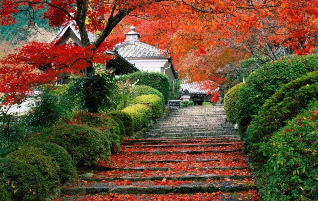 Фестиваль красных листьев в Пекине ab76b03d09ec6af6c020145318956828.jpg