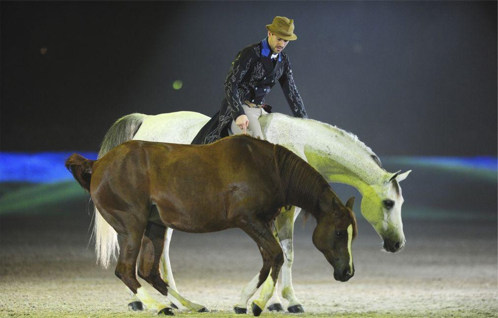 Конное шоу Madrid Horse Week в Мадриде b6c55b0a0294871f72710c41acd33e39.jpg