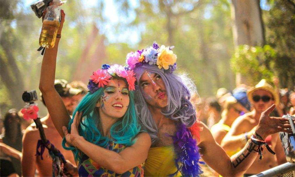 Фестиваль электронной музыки «Rainbow Serpent» в Лекстоне c45e3089e46230ba505380bbc436b283.jpg