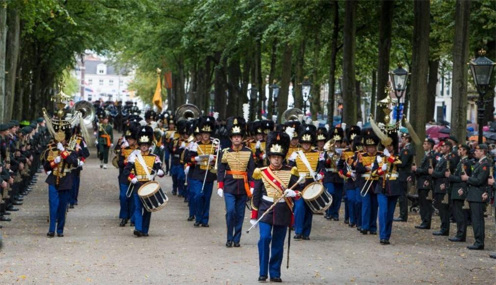 День Принца в Гааге c490ac878ef3ab71eaffa45d689f1287.jpg
