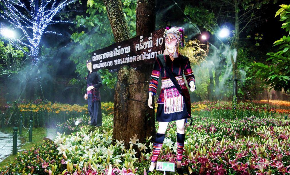 Фестиваль цветов в Чианграй c5ce9d8920ba2a96884ee72eb91d5ddc.jpg