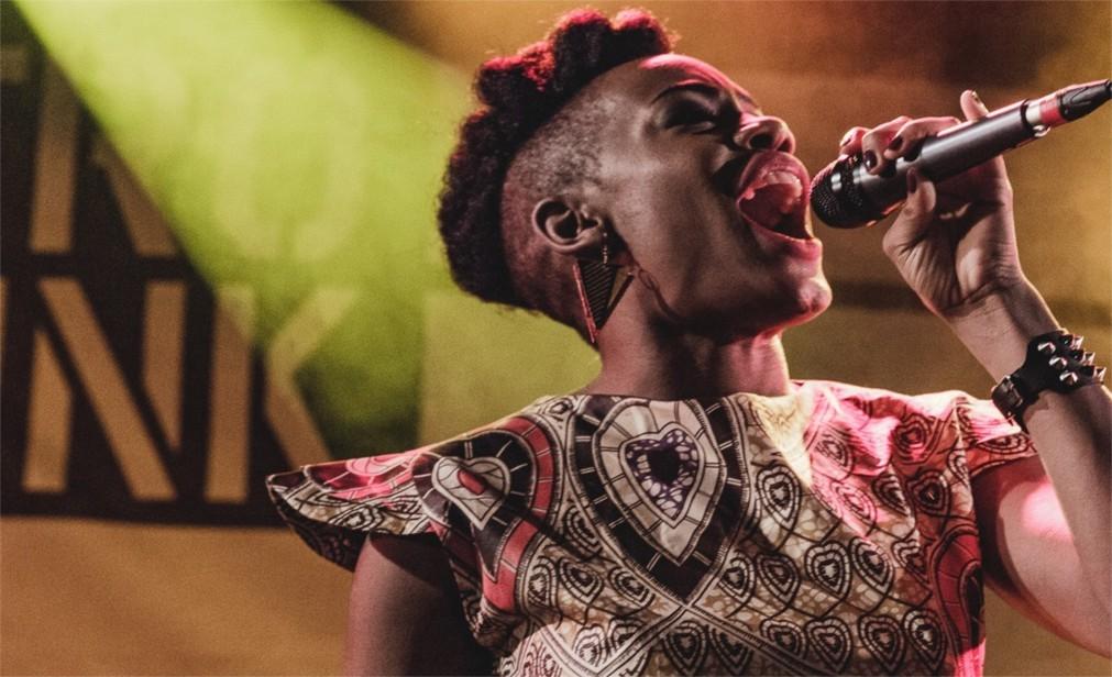 Музыкальный фестиваль Afropunk в Париже cd91d63823ff40bfdb3815552add51b5.jpg