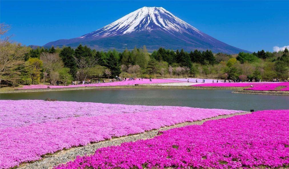 День гор в Японии d3ac95d33abdf78dbc3f167d88268ccd.jpg