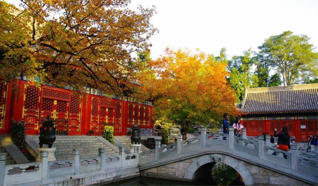 Фестиваль красных листьев в Пекине da3eb2af558eb66f1c8cc0f4f56b7311.jpg