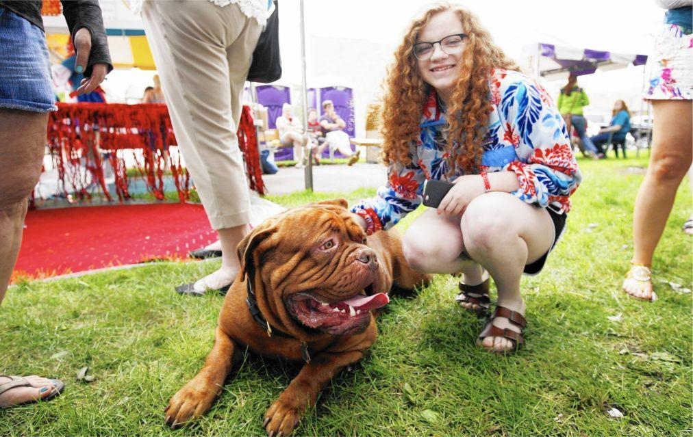 Ирландский фестиваль рыжих в Кросхейвене eb4339d89189f18f8dfd2117c23ada02.jpg