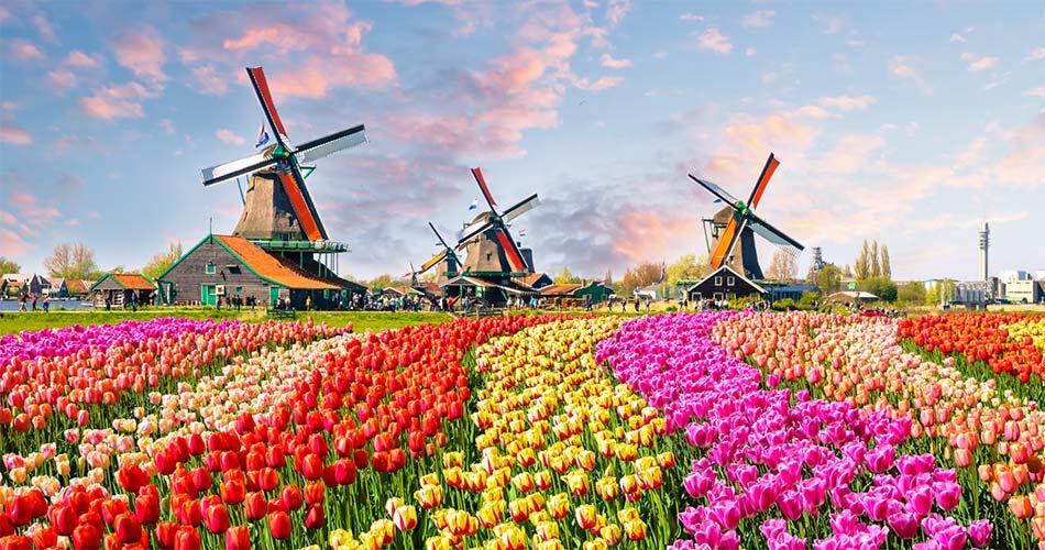 Самые красивые места и направления в Нидерландах