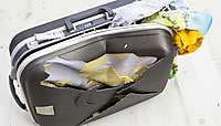 поврежденный багаж в самолете