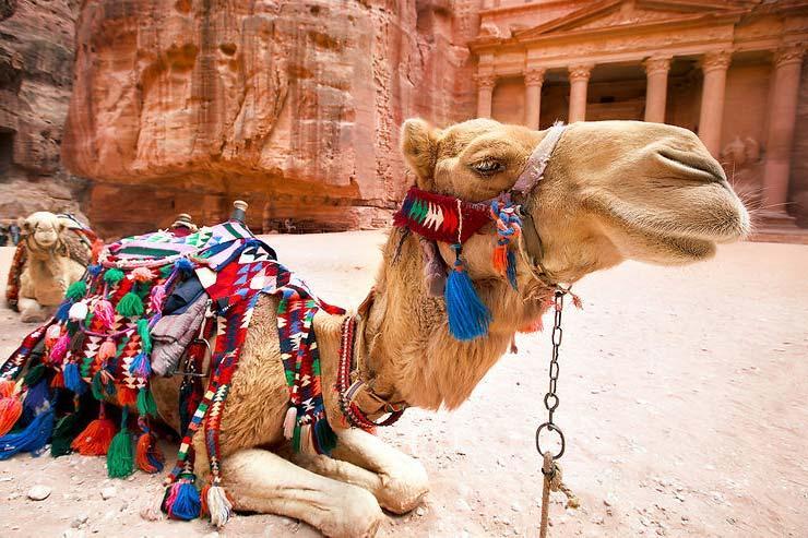 Иордания: все краски Ближнего Востока