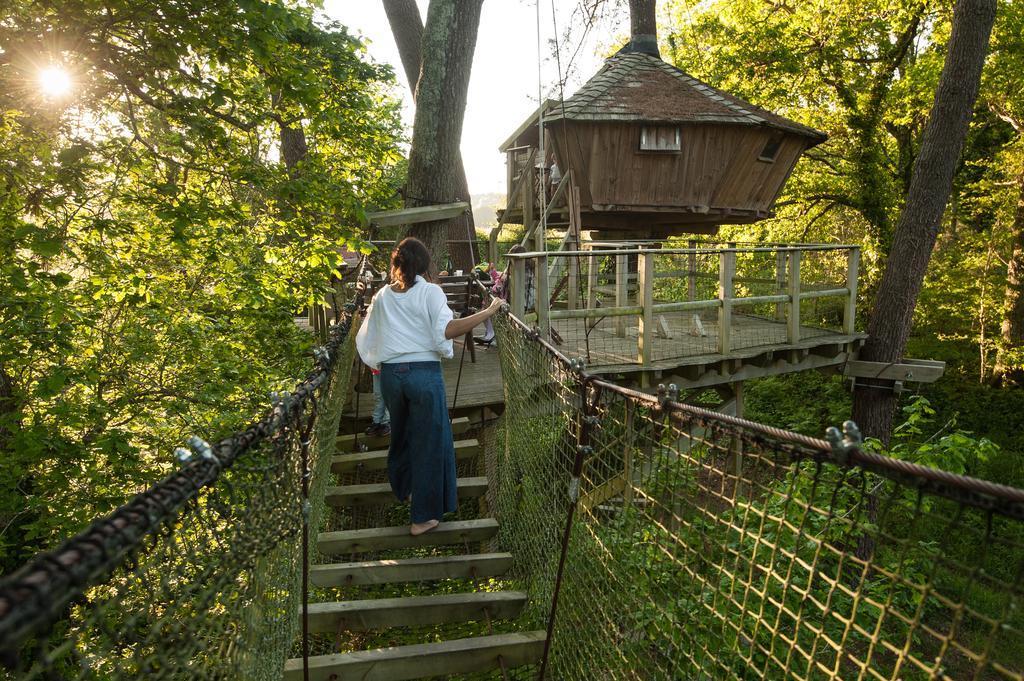 отели из домиков в лесу на деревьях во Франции