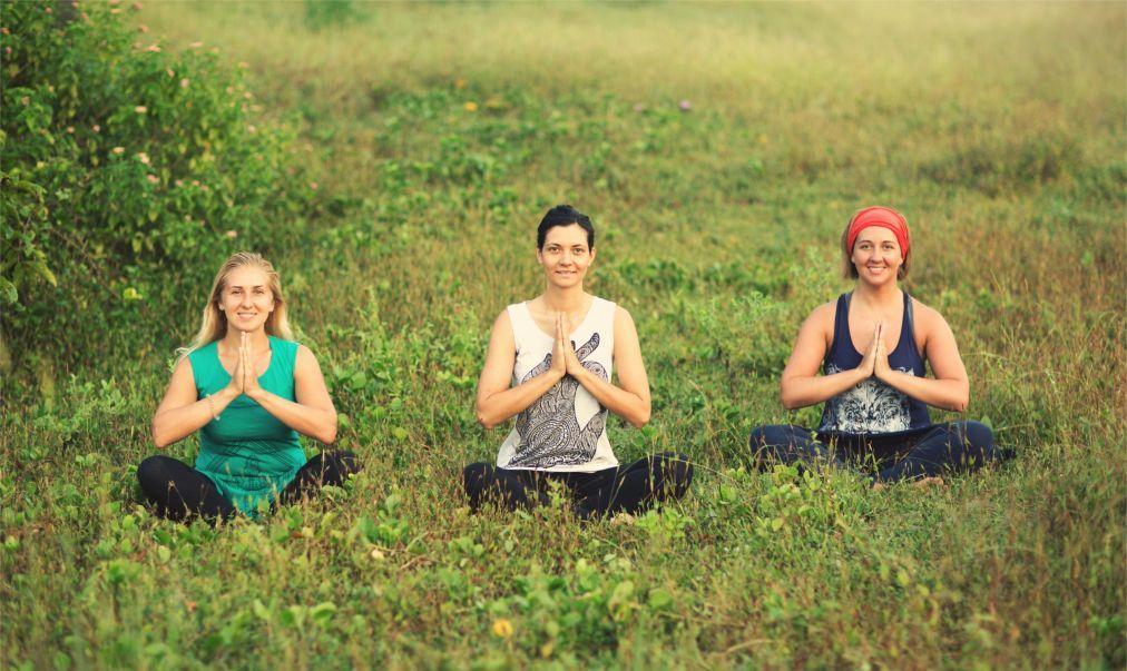 Международный фестиваль йоги «Счастье» в Сочи 13f0872179e87c0b2f0333213116caf0.jpg