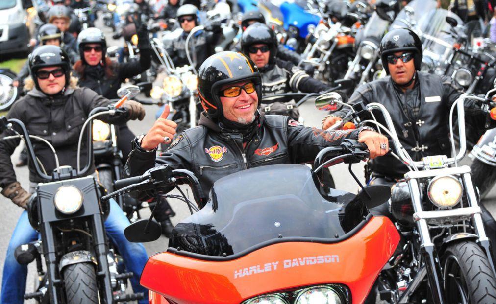 Байк-фестиваль European Bike Week в Фаак-ам-Зее 1b0259e9a14a04570008ee9a85dff286.jpg
