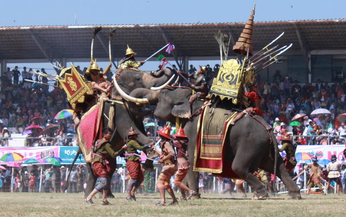 Фестиваль слонов в Сурине 1decbbcd81e7e3ad946ce7c804c7c7d4.jpg