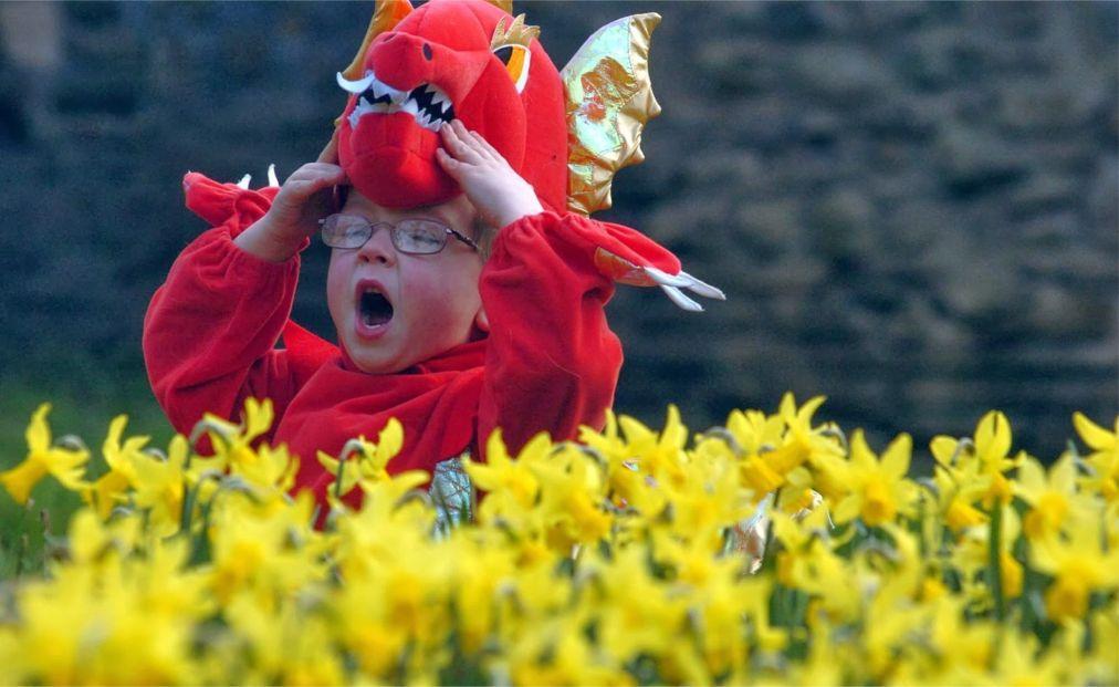 День Святого Дэвида в Уэльсе 203b77ed6b2e42cdbdedb9c3417356b6.jpg