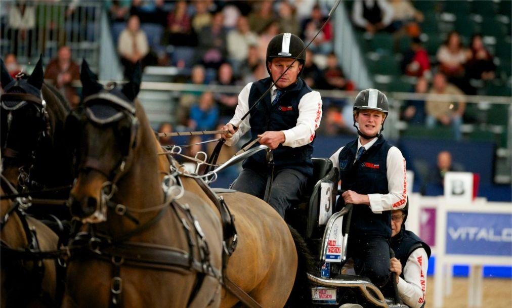 Конное шоу Madrid Horse Week в Мадриде 2816947f25957c4a33f578f6e266c504.jpg