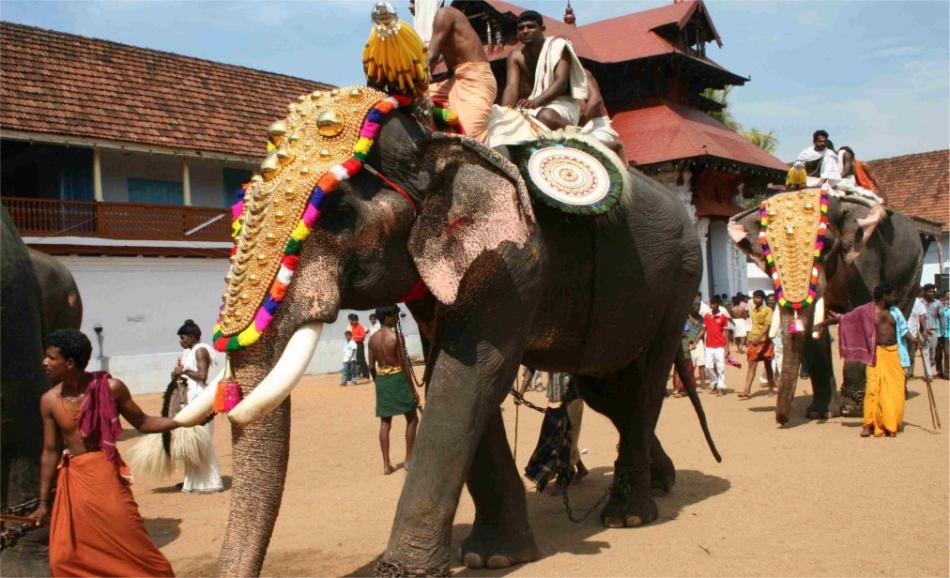 Праздник Онам в Керале 317fbe8edc6e4e4c0a9c3831142323af.jpg