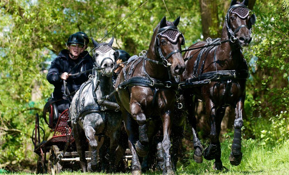 Королевское конное шоу в Винздоре 32ada3772d86590c24a2dfd37d00035a.jpg
