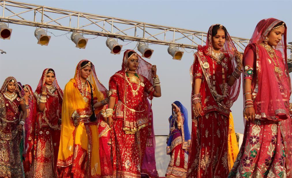 Биканерский фестиваль верблюдов 3612790ec8f6ef71ffa124ae78209102.jpg