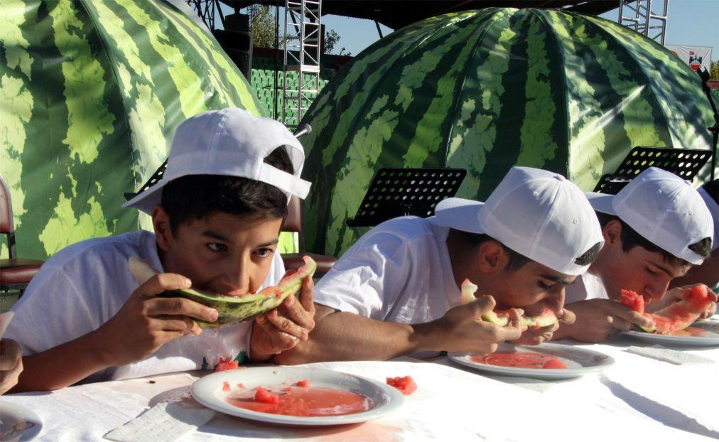 Фестиваль арбуза в Диярбакыре 4a07c6cf990f2656aebd95ad5b1811a8.jpg