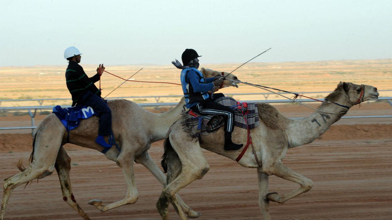 Фестиваль культурного наследия Дженадерия в Саудовской Аравии 4f628e7455ab4d8ef6819cc1dcdad15a.jpg