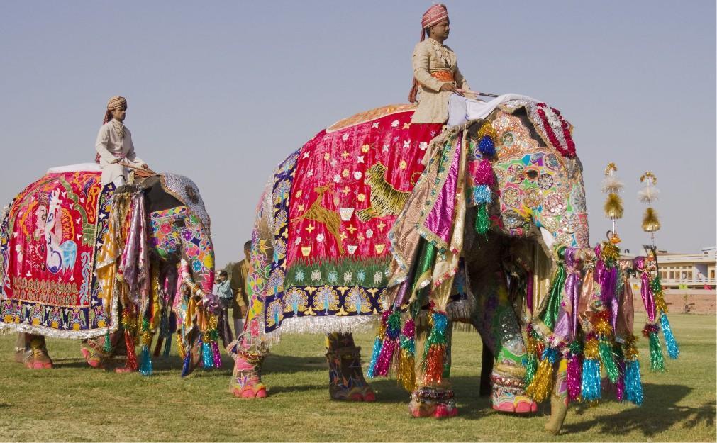 Фестиваль слонов в Джайпуре 58d5cefdace7e70515a1e5631a73169e.jpg