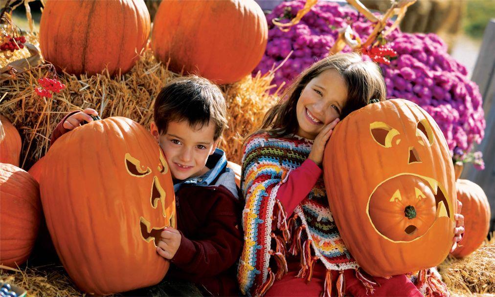 Хэллоуин в США 58e13017aea745ac154e7b2cbddbe838.jpg