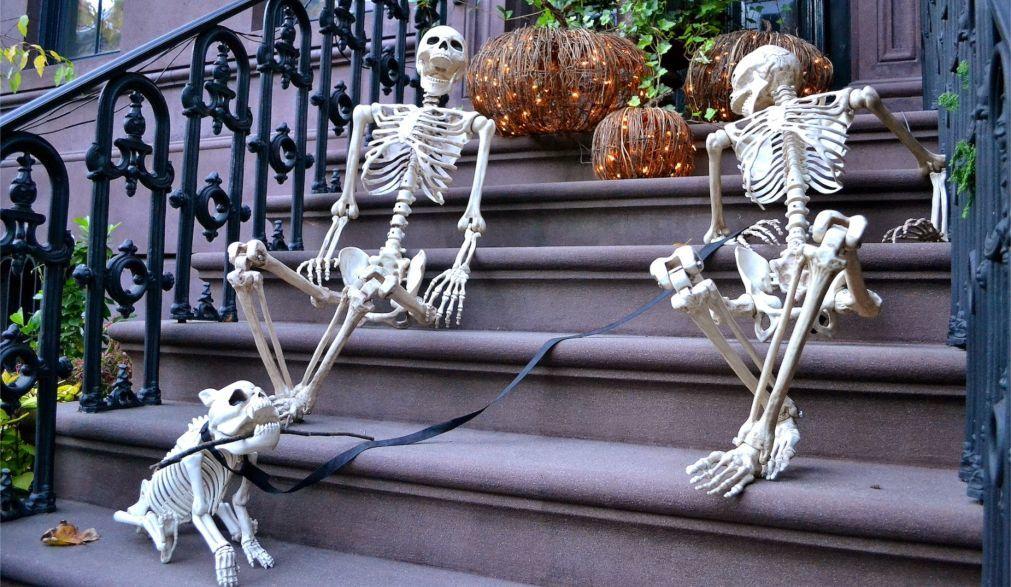 Хэллоуин в США 58e6592e4ae7dda1e8fa38c770847a4c.jpg