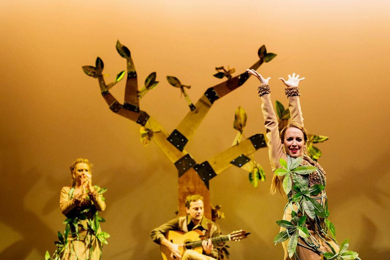 Биеннале фламенко в Севилье 5e4fda65a9b60e822b7a78453cc59541.jpg