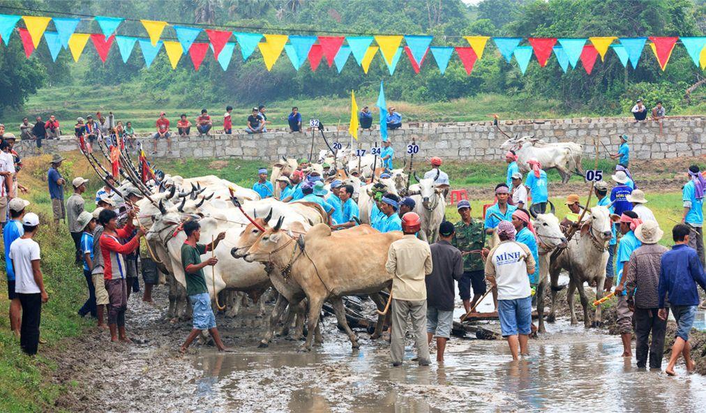 Фестиваль буйволиных скачек в Анзянге 6af732ace3d75274c92e46a13dad6cd8.jpg