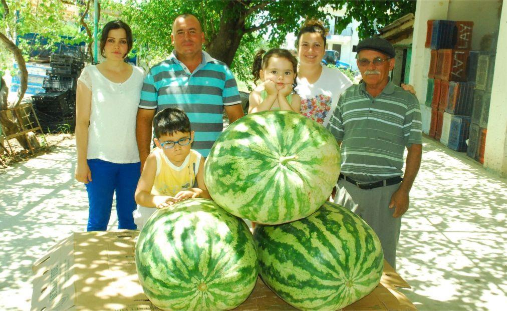 Фестиваль арбуза в Диярбакыре 6c82aba93cb40733d8080ec2e6787076.jpg