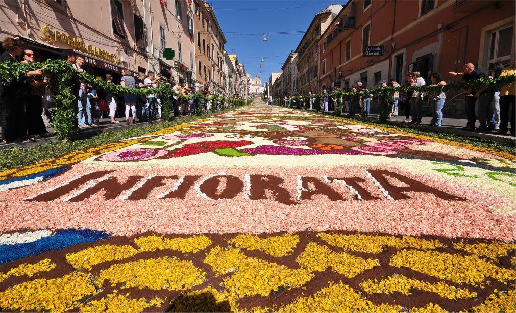 Фестиваль цветов Инфиората в Италии 6d30e36145da65287df452e0c90672a8.jpg