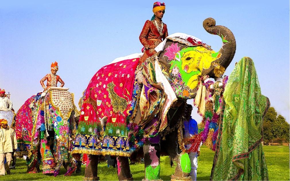 Фестиваль слонов в Джайпуре 76867447bb8dcd984c7641d45d9ed4ec.jpg
