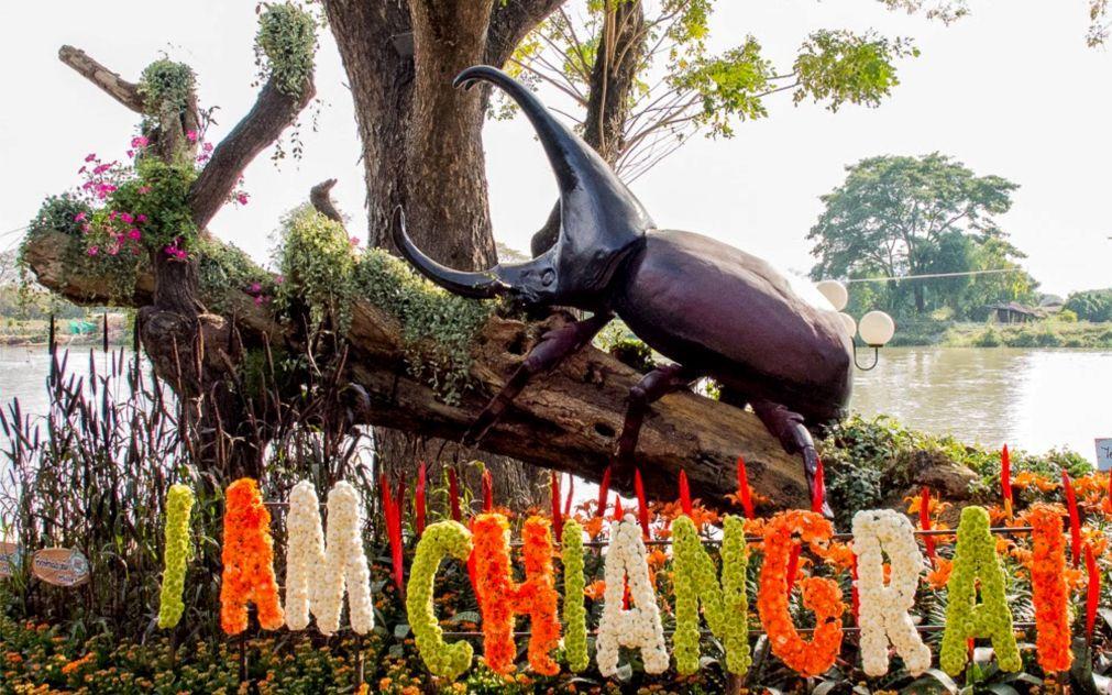 Фестиваль цветов в Чианграй 81ee7bf06f8bc49a7956364095980088.jpg