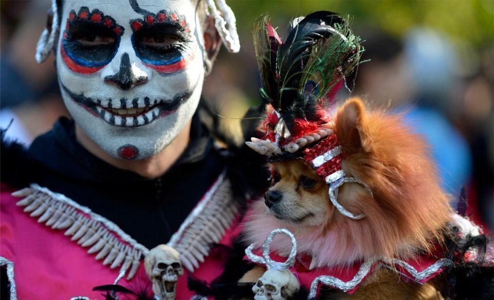 Хэллоуин в США 9456fd01d5102accf4f46f73fa1c3b66.jpg