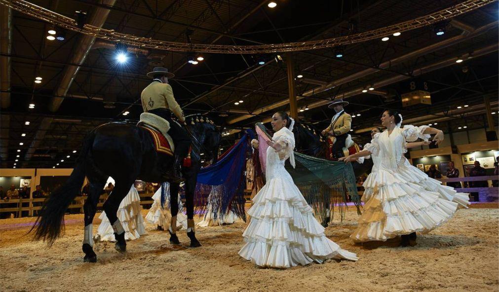 Конное шоу Madrid Horse Week в Мадриде a5c07640826d31a303c946c8b15fbf12.jpg