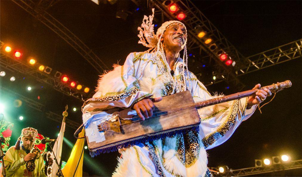 Фестиваль гнауа и этнической музыки в Эссуэйре bc4829adcde66fb91dafd0b7701cd997.jpg