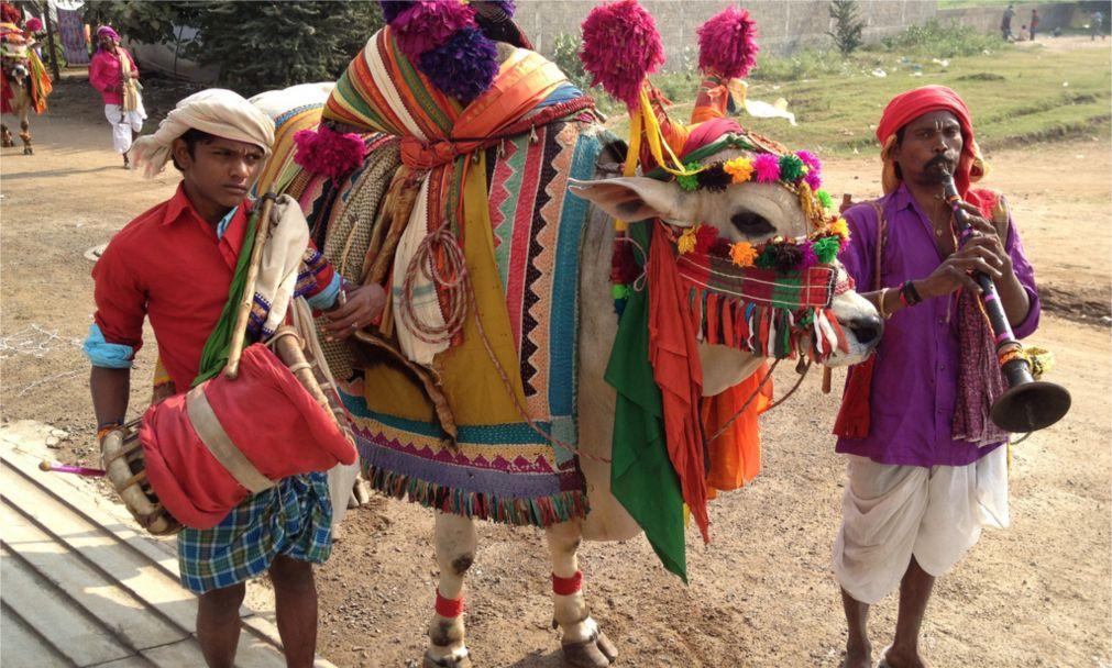 Праздник урожая Понгал в Индии c7ab4e0abe58980dbd036913244e62d2.jpg